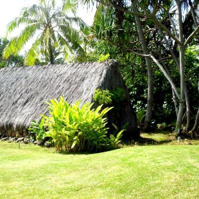POLYNESIAN HAWAII