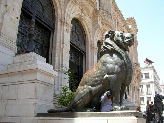 LES LIONS DE LA MAIRIE - THE CITY HALL 'S LIONS